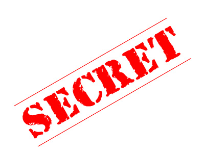secret to niche sites success