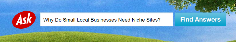 3 Reasons Why Small Local Businesses Need Niche Sites
